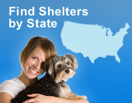 Find Shelters by State