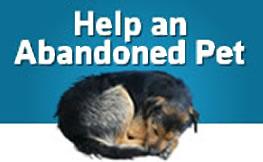 Help an abandoned pet